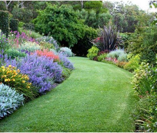 tutte le piante disponibili su solopiante